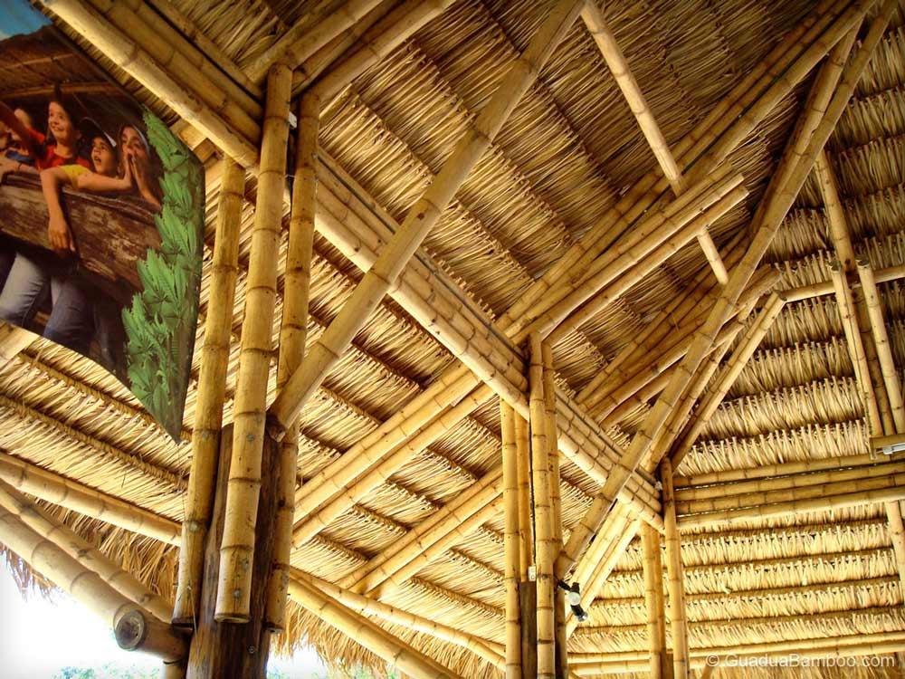 Oldhamii timber